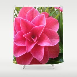 Rosé Tea Rose Shower Curtain