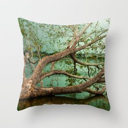 Wandering Branches Throw Pillow