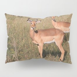 Boys Looking for Girls Pillow Sham