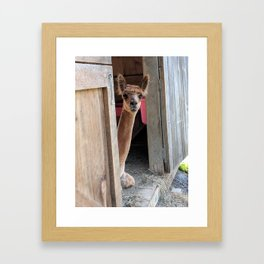 Why Hello! Framed Art Print