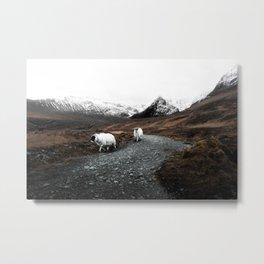 Ram Crossing / Isle of Skye Metal Print