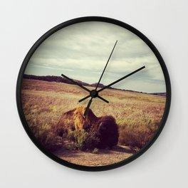 Sunbathing Bison Wall Clock