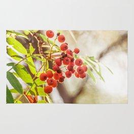 Rowan berries Rug