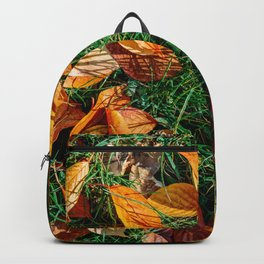 Orange Autumn Leaves Background In Fall Season, Autumn Season, Fall Background, Falling Leaves, Art Backpack