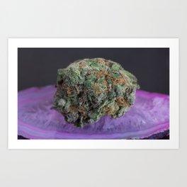 Grape Ape Medicinal Medical Marijuana Art Print