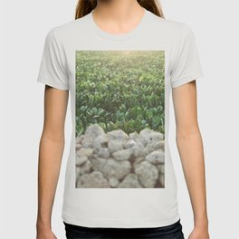 Nature photography, home furnishings, fine art, kitchen wall decor, South Italy, Sicily, Apulia, T-shirt