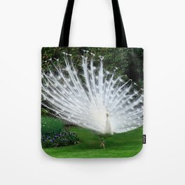 White Peacock of Isola Bella Tote Bag