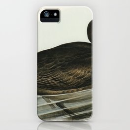 Giant Petrel (Procellaria gigantea) illustrated by Elizabeth Gould (1804–1841) for John Gould's (180 iPhone Case