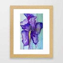 Bleeding Iris Framed Art Print