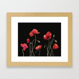 Poppies at Midnight Framed Art Print