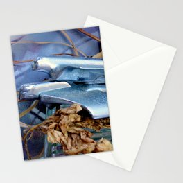 Chrome On Chrome Stationery Cards