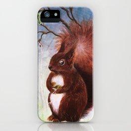 A fuzzy feeling - squirrel iPhone Case