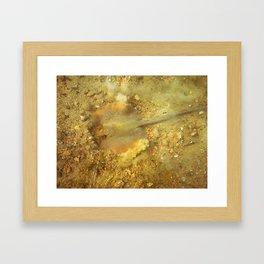 Razafish Framed Art Print