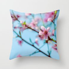 Pink on Blue Throw Pillow