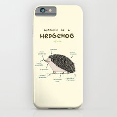 Anatomy of a Hedgehog iPhone 6 Slim Case