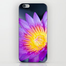 The World is a Garden iPhone Skin