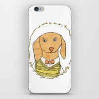 dachshund iPhone & iPod Skins featuring Dachshund by MariyArti