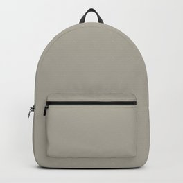 Pratt and Lambert 2019 Ever Classic Gray 32-24 Solid Color Backpack