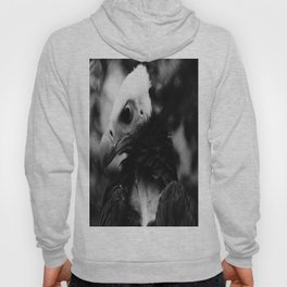 Do not forget what i have told! Hoody