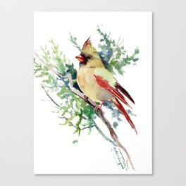 Cardinal Bird Artwork, female cardinal bird Canvas Print