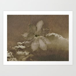 The Eye Sees Flower Art Print