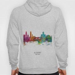 Albany New York Skyline Hoody