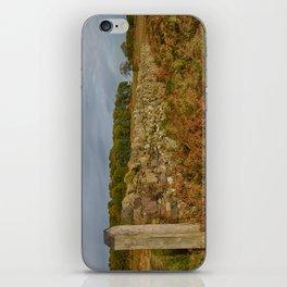 Autumn wall iPhone Skin