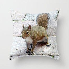 Squirreling Around Throw Pillow
