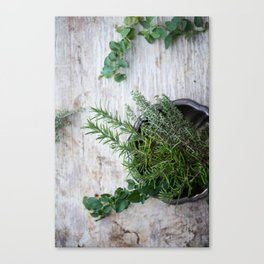 Fresh Herbs Canvas Print