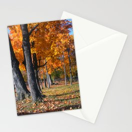 Autumn Golden Leaves Stationery Cards
