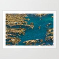 Decorative nature Art Print