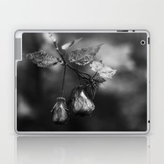 One Point Two Laptop & iPad Skin