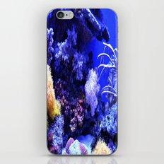 Sea creatures iPhone & iPod Skin