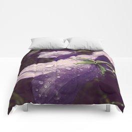 Bluebells Comforters