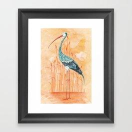 An Exotic Stork Framed Art Print