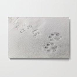 Yellow Stone - Wolf Tracks Metal Print