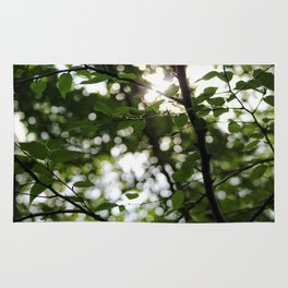 Early Morning Forest Hike Rug