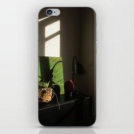 Daydream III iPhone Skin