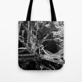 Exmoor XI Tote Bag