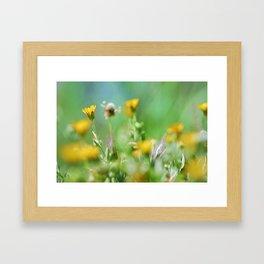 Spring colors Framed Art Print