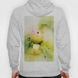 Apples watercolor Hoody