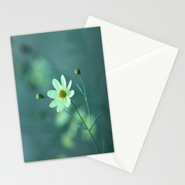 Companion Stationery Cards