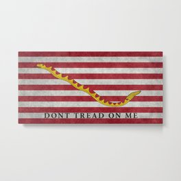 First Navy Jack flag of the USA, vintage Metal Print
