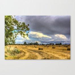 Farmland In Summer Canvas Print