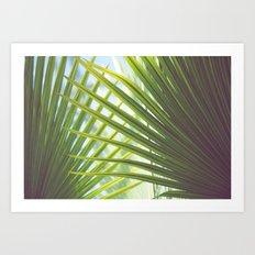 Cabana Life, No. 2 Art Print