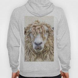 Longwool Sheep Hoody