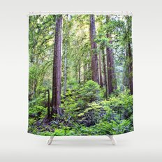The Light Through the Woods Shower Curtain