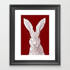 Red Rabbit  Framed Art Print