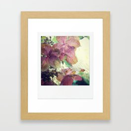rhododendron love Framed Art Print