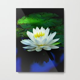 Blue water reflections- lily pad flower Metal Print
